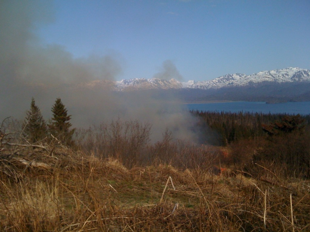 Community Forum: Wildfire Mitigation in the Anchorage bowl